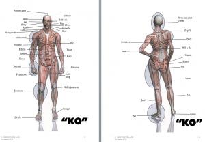 anatomie en kréol
